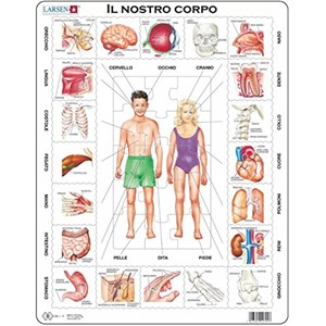 "Larsen (OB1-IT) - ""Il Nostro Corpo - IT"" - 35 Teile Puzzle"