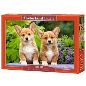 "Castorland (C-104659) - ""Welsh Corgi Puppies"" - 1000 Teile Puzzle"